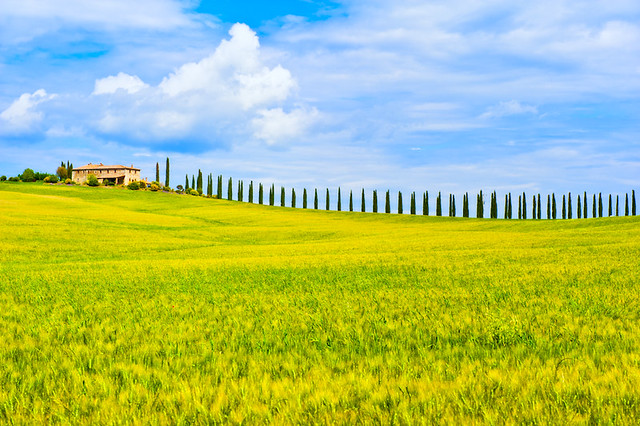 Living the Dream in Tuscany