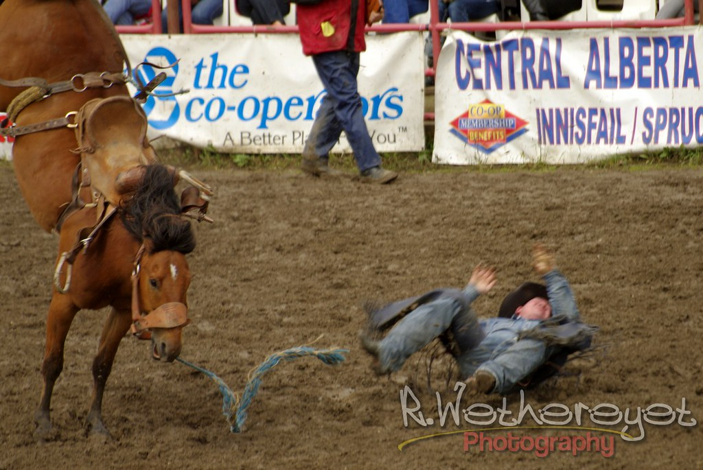 2012 Innisfail Pro Rodeo 00011 Quot Must Have Hit The Eject