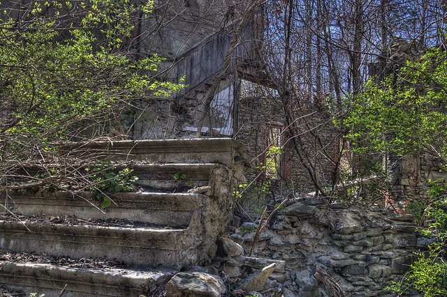 FR Park - Steps
