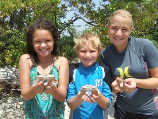 Blue crab catchers