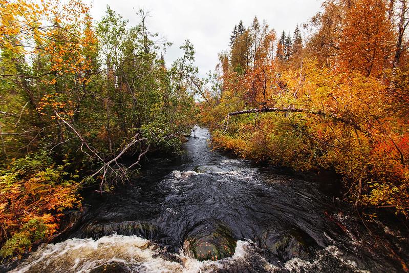 Pyhäjoen luontopolku Pallas-Yllästunturin kansallispuisto
