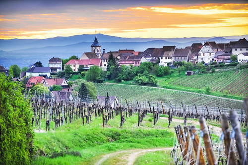 green church rural sunrise vineyard day village wine cloudy postcard charming frenchwinecountry alsacewineroad