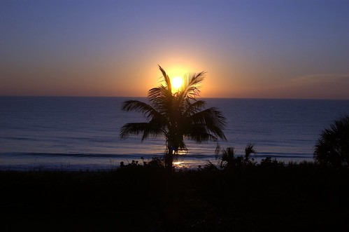 sunrise disney verobeach d40 disneysverobeachresort