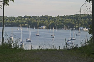 Sailboats in Westport Bay