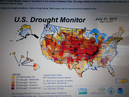 US Drought Monitor August 2, 2012
