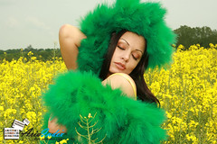 Aria Giovanni in yellow flowers