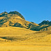 Sutter Buttes by Pacific NW / Nor Cal Surveyor