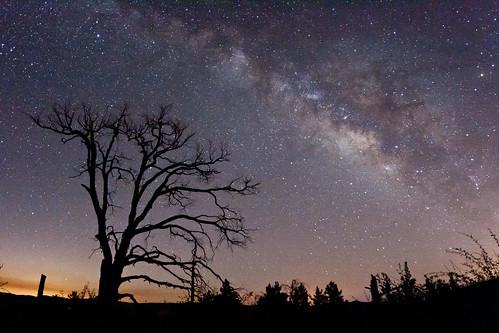 california way geotagged via galaxy milky milkyway lactea vialactea cuyamacaranchostatepark geo:lat=329558894103717 geo:lon=116581425589628