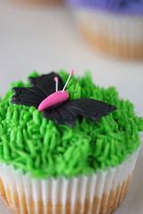 Butterfly&Grass Cupcake