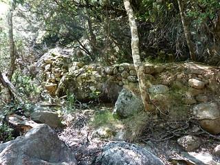 Remontée du Carciara : vestiges du chemin en RD en amont de la brèche