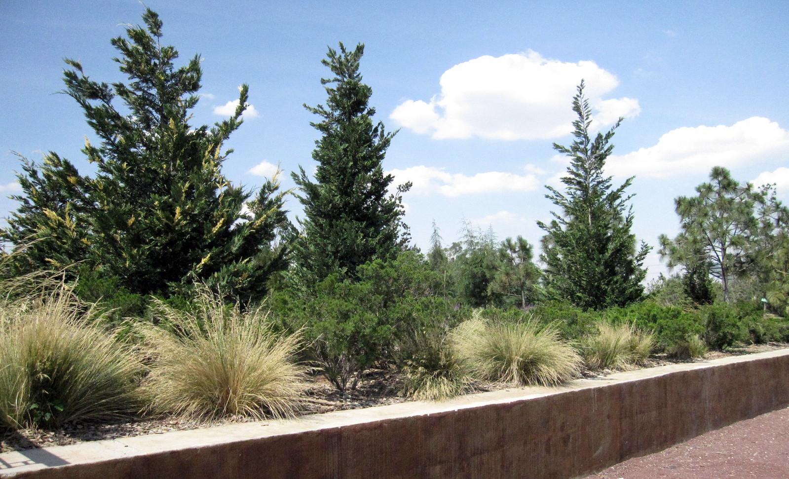 Parque Bicentenario 05