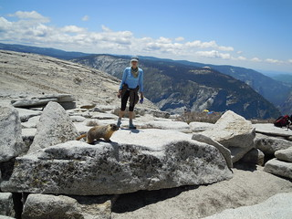 Hiking (and Climbing) Half Dome: Marmot and new friend Sandy | by mormolyke