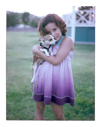 dog june puppy polaroid kid child 14 violet gazebo 56 pathfinder slowexposure landcamera aftersunset polaroidlandcamera chihuahuamix instantfilm afterdusk fujifp100c 86324 clarkdalepark ellenjoroberts ambersdaughter bornin2003 june2012 rollfilmcameraconvertedtopackfilm bornin2011