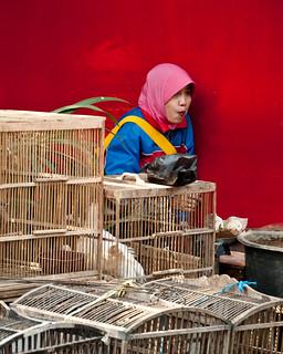 Seller at the Bird market