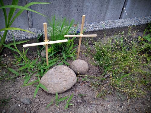 SAKURAKO - Hers pet s grave. | by MIKI Yoshihito. (#mikiyoshihito)