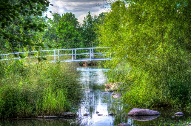 Forest Park Foot Bridge