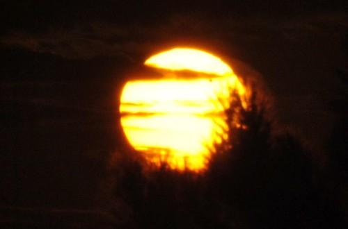 Sun Venus