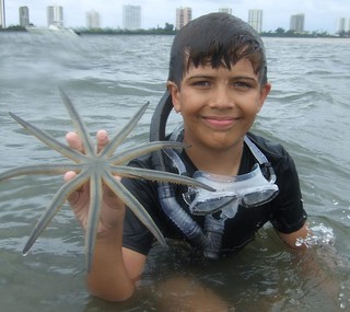 Douglas finds a 9 armed starfish.