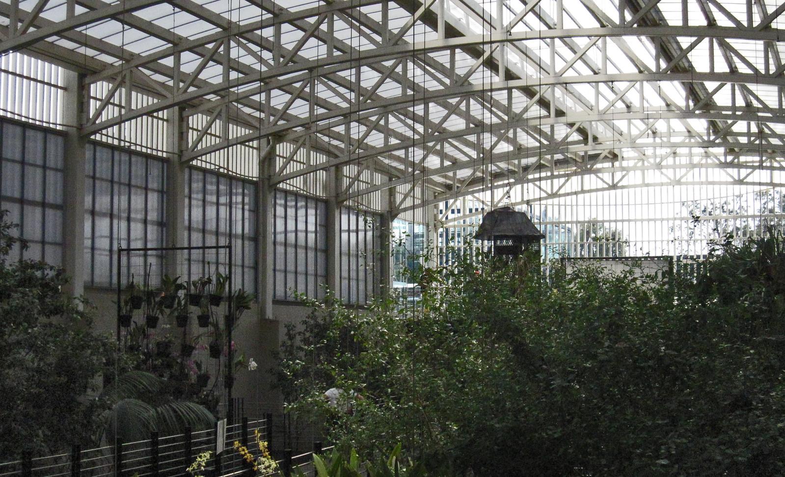 Parque Bicentenario 90
