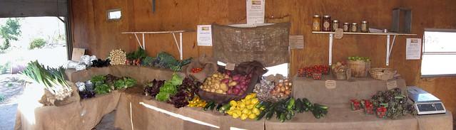 IMG_6709_4 120623 Ellwood Canyon Farms Honor System farmstand ICE rm stitch99