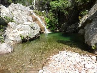 Remontée du Carciara : dans le lit du ruisseau, la cascade à contourner ou escalader