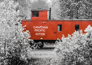 Little Red Caboose | by Andrew Shepherd