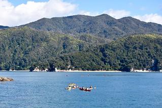 Abel Tasman National Park   by ndimmock