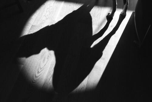 Shadow Dog (leicaflex, 50mm summicron) | by PositiveAboutNegatives