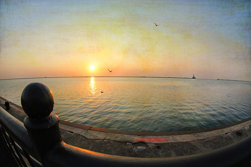 sunlight chicago color texture nature sunrise fence reflections shadows bokeh lakemichigan 7d navypier ie shining tistheseason hff mfcc supershot artdigital innamoramento trolled memoriesbook 10mmfisheye awardtree daarklands magicunicornverybest crazygeniuses 1crzqbn andisaidhooohooo