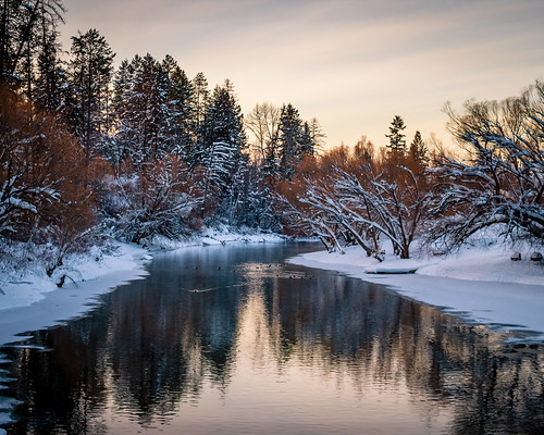 nature explore adventure river water cold montana whitefish winter beautiful outdoors ducks camping hiking backpacking dslr canon white orange trees