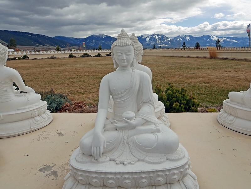 1000 Buddhas (30)
