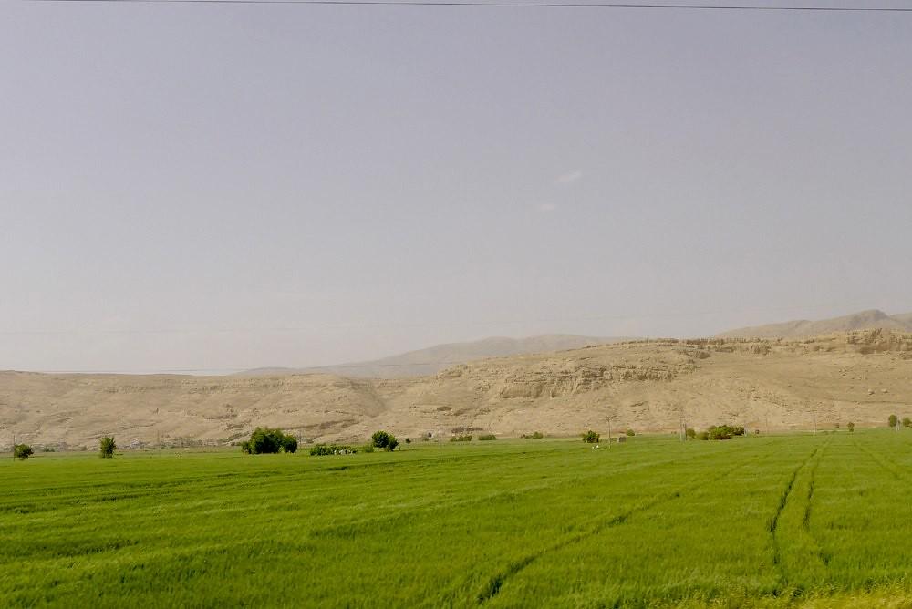 yazd-shiraz-L1030155