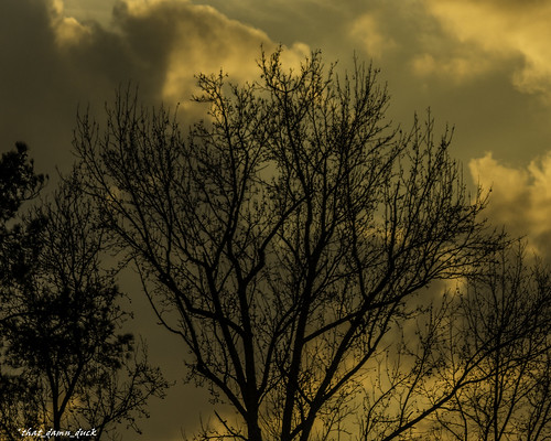 sunset nature sundown clouds