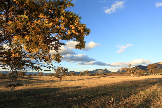 Capertee Valley NSW