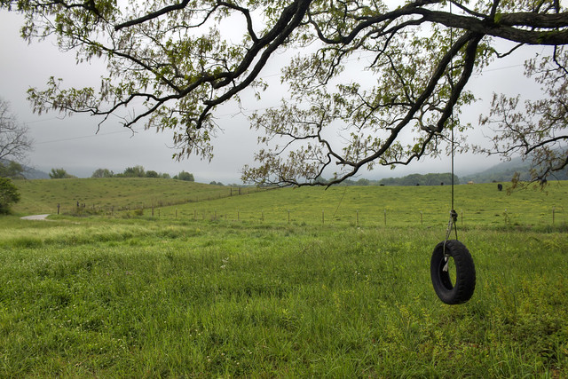 Tire swing, Grassy Cove, Cumberland Co, TN