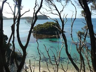 Coastline - Rakiura Track | by Department of Conservation
