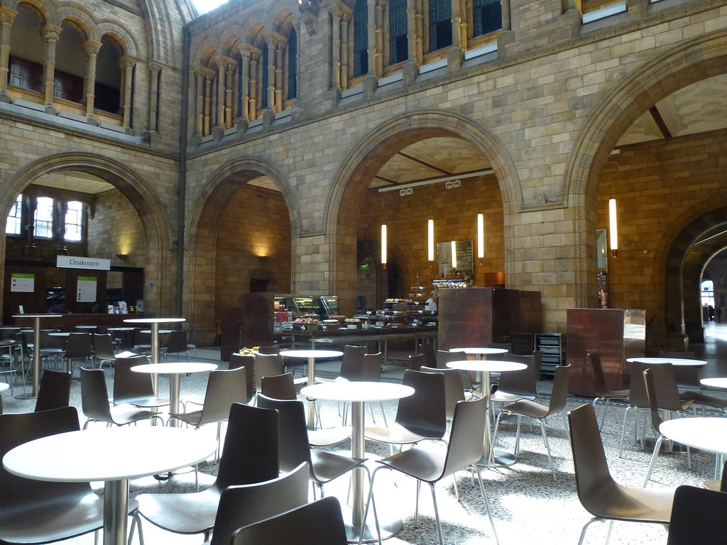 Natural History Museum London The Cafe