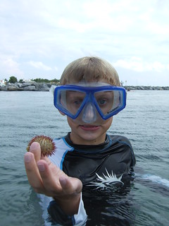 Sawyer finds another sea urchin. | by AdventureMIke.com