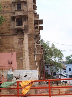 2010.7.18~28 Travel India & HongKong (Varanasi Dasaswamedh Ghat)   by revoldaw