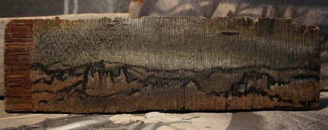 Free Art Driftwood Landscape