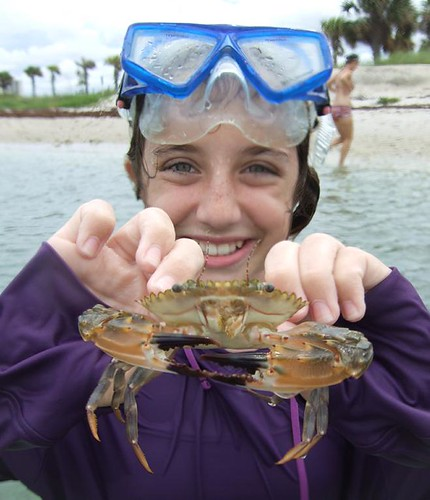 Rachael with a giant swimming crab