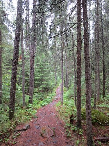 Eagle Mountain trail.