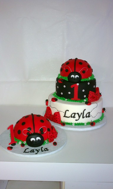 Ladybig First Birthday Cake and matching oversized smash cupcake