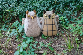 light brown owls | by Mimi K