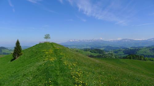 schweiz switzerland spring view suisse aussicht frühling hügel voralpen napf menzberg oberlehn