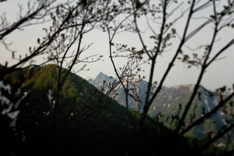 20120520_巻機山_0026