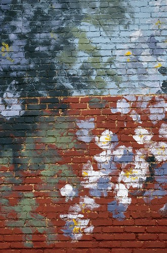 flowers trees summer plants usa oklahoma murals photographs northamerica theaters duncan waymarks