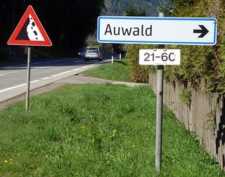 Auwald-Wegweiser