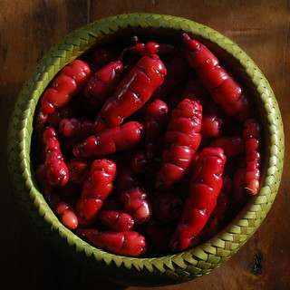 Oca (New Zealand Yam) | by Céili & Roger
