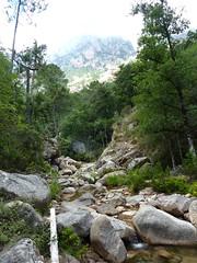 Remontée de la Frassiccia : dans le lit du ruisseau, après le contournement